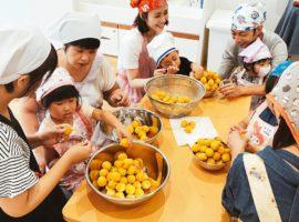 食の学校 第12回 梅しごとをはじめよう!編 開催レポート